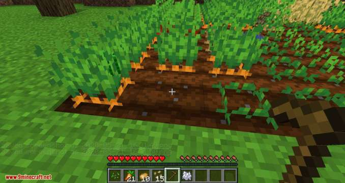 Replanting Crops mod for minecraft 11