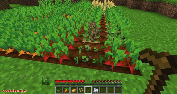 Replanting Crops mod for minecraft 06