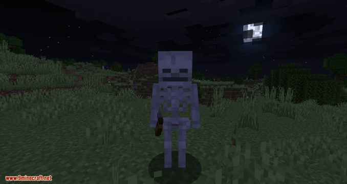 Stray Spawn mod for minecraft 03