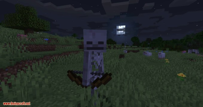 Stray Spawn mod for minecraft 01
