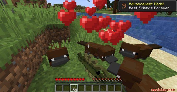 Platypus Mod Screenshots 8