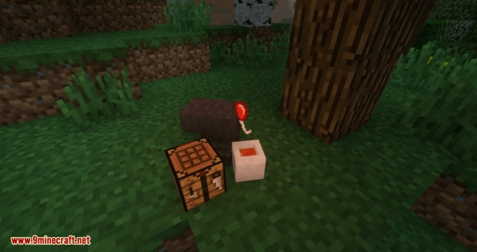 Bountiful Baubles mod for minecraft 10