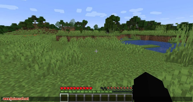Inventory Totem mod for minecraft 08