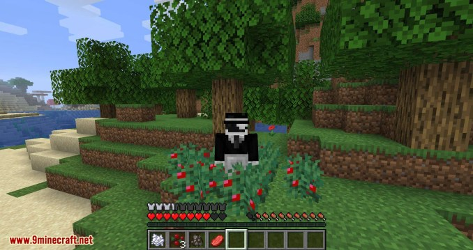 Walk Through Berries mod for minecraft 05