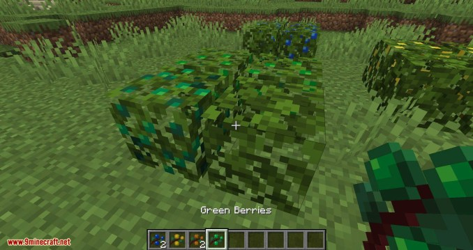More Berries mod for minecraft 05