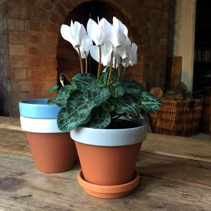 Terracotta Pot Manufacturers