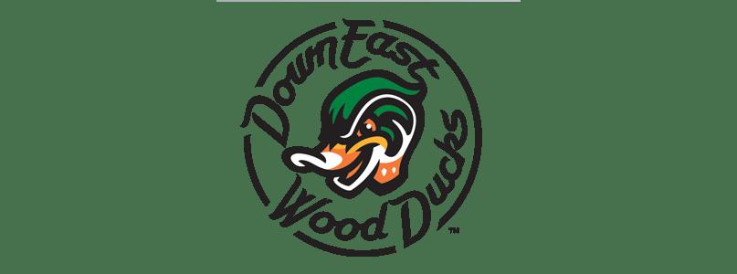 Wood Ducks Logo_433702