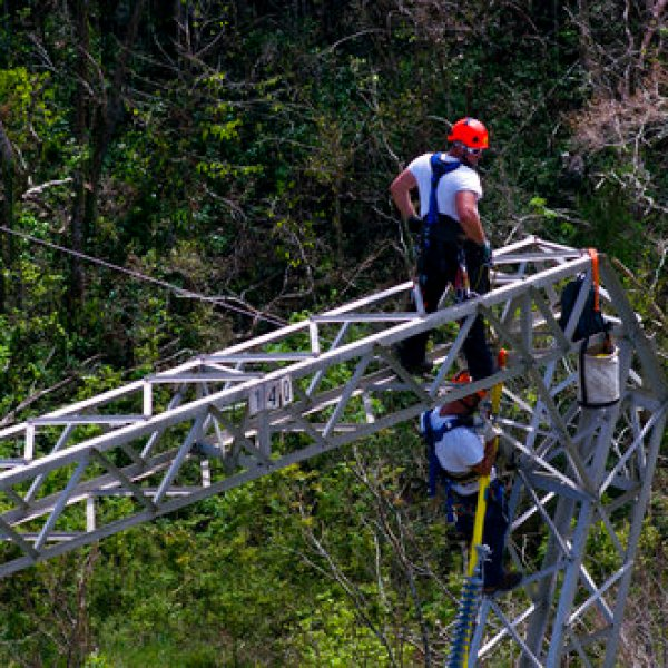Puerto Rico Power Contract_497675