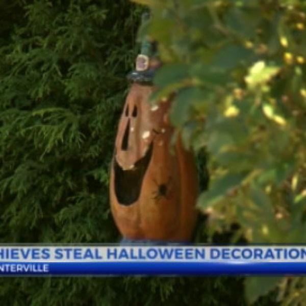 halloween decorations_493157