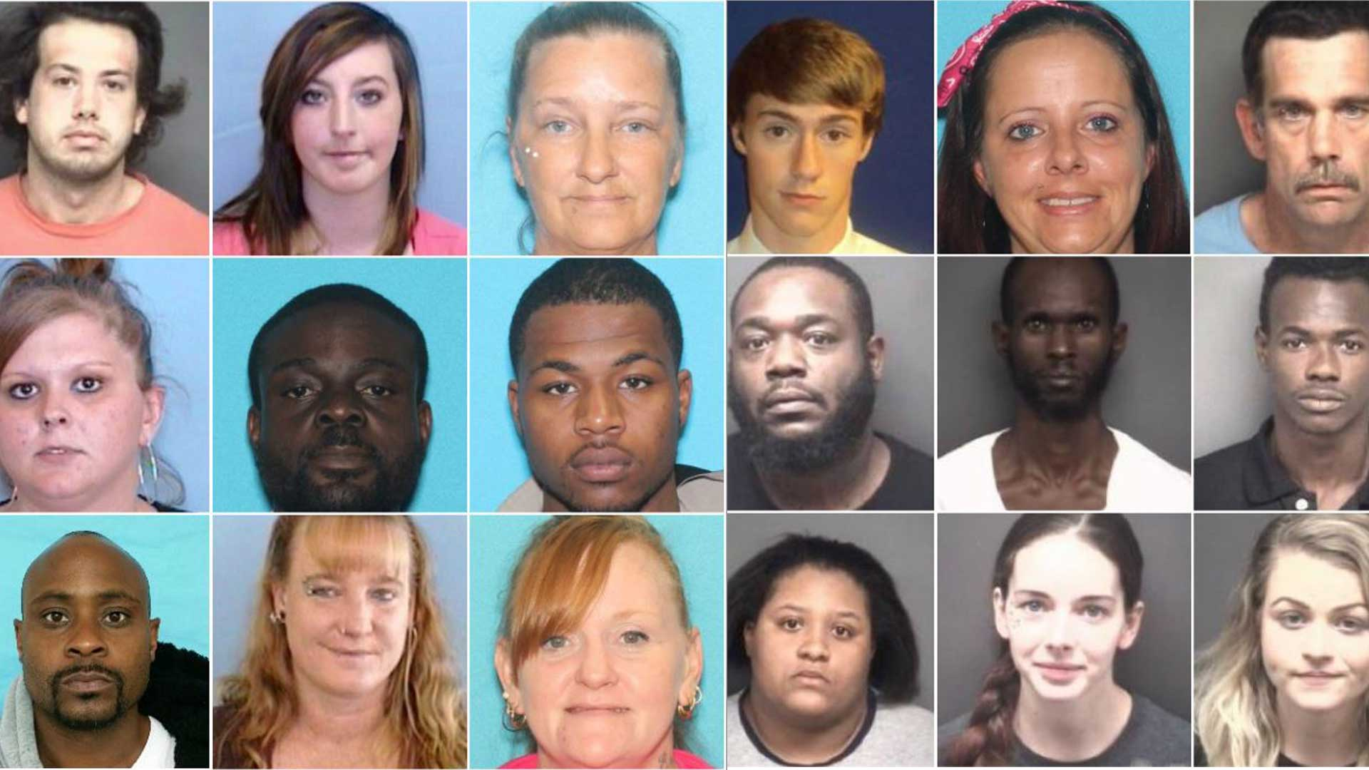Pitt Co  Sheriff's Office nets at least 20 arrests in 'Operation