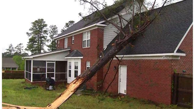 tree on house cumberland county_1555712171568.JPG_83333185_ver1.0_640_360_1555785798373.jpg.jpg