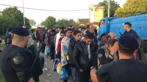 Migrants in Tovarnik, Croatia, line up for coaches to registration centers