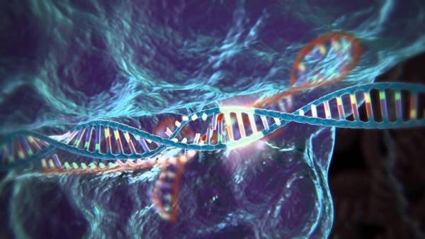 gene therapy CRISPR tech