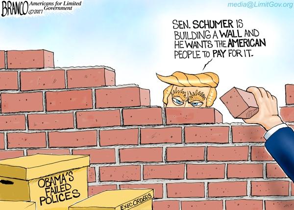 Schumer Wall NRD 600