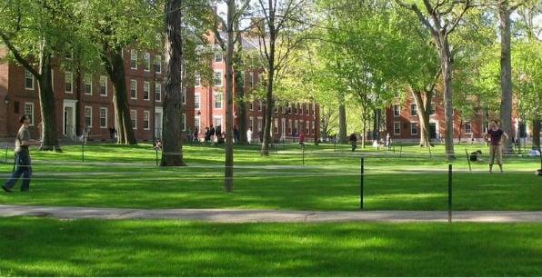 Harvard University (Wikipedia)