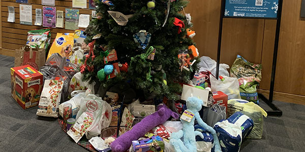 Pet Supply Tree, donations, lobby, community, Staff Association