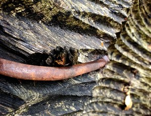 rusty curved bar on decayed wood