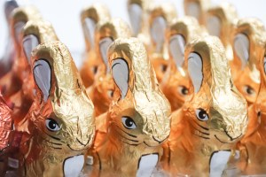 foil wrapped easter bunnies
