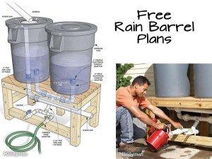 Free rain barrel plans