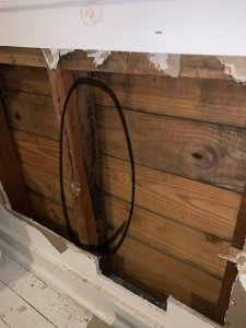 Mold in wall due to high moisture and wicking via the wall sill.