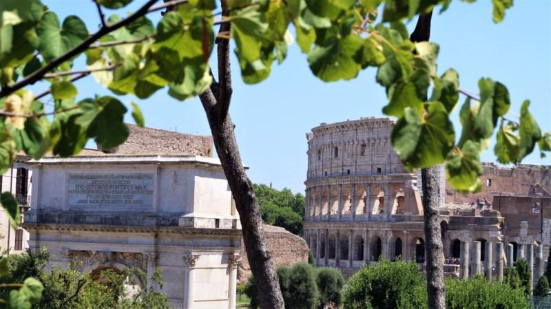 Blick vom Foro Romano auf das Collosseum in Rom