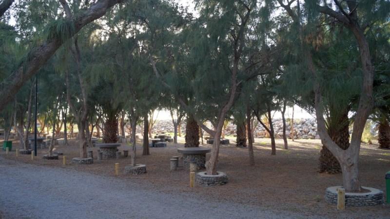 Picknick am Hafen von La Aldea de San Nicolas