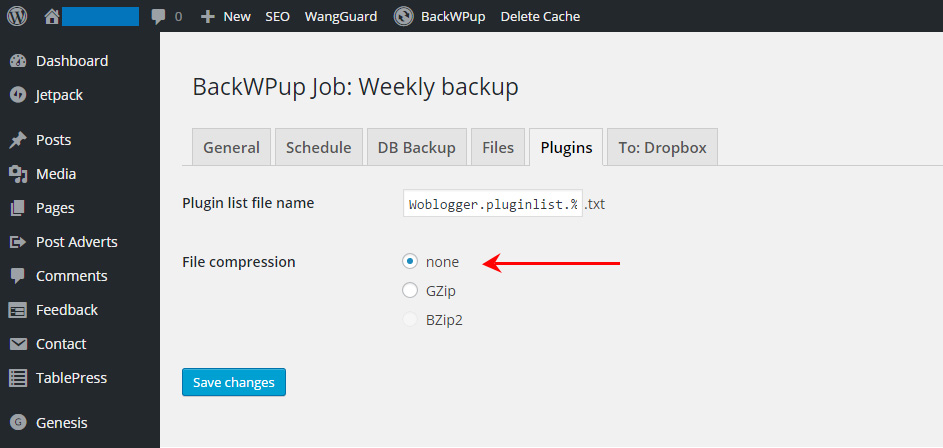 How To Backup Your WordPress Site Using BackWPup - Plugins Tab