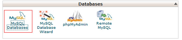 Database Page How to Migrate Your WordPress Website to a New Web Host