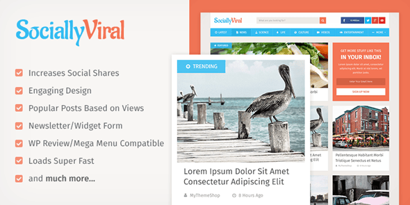 SociallyViral Best AdSense WordPress Themes for Earning More