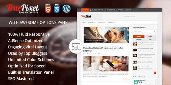 TruePixel Best AdSense WordPress Themes for Earning More
