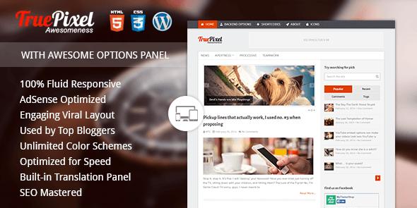 TruePixel Best AdSense WordPress Themes for Earning More