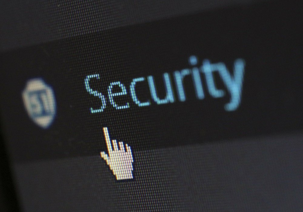 Keeping your Successful WordPress Blog Safe