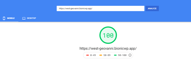 Bionic WP Site Google Page Speeds