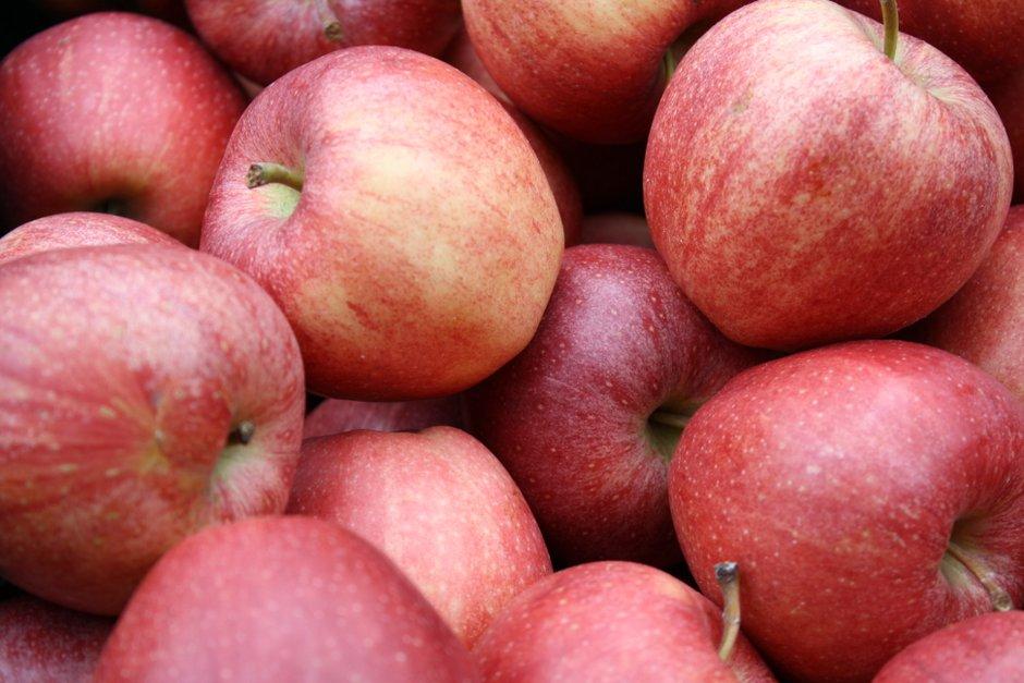 Kaufen Sie Obst, Gemüse und weitere Produkte auf den Wochenmärkten in Solingen ein