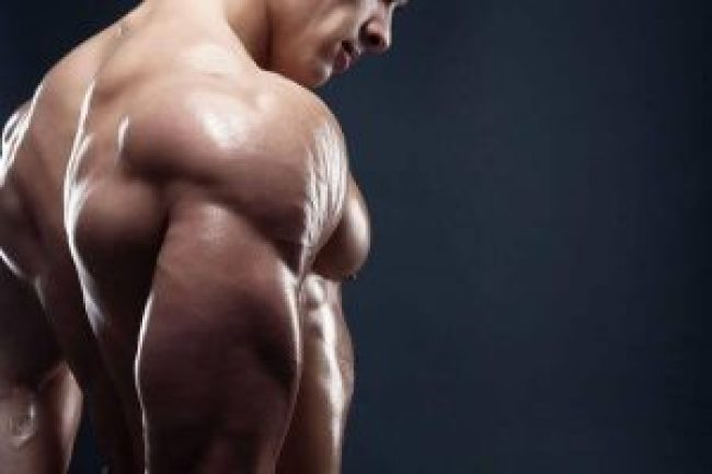 triceps-workouts-at-the-gym-wodnews