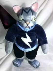 SUPERHERO CAT