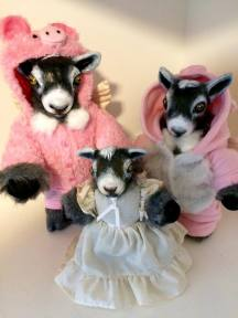 Commissed 'Angel' Goat Memorial Dolls with Doeling