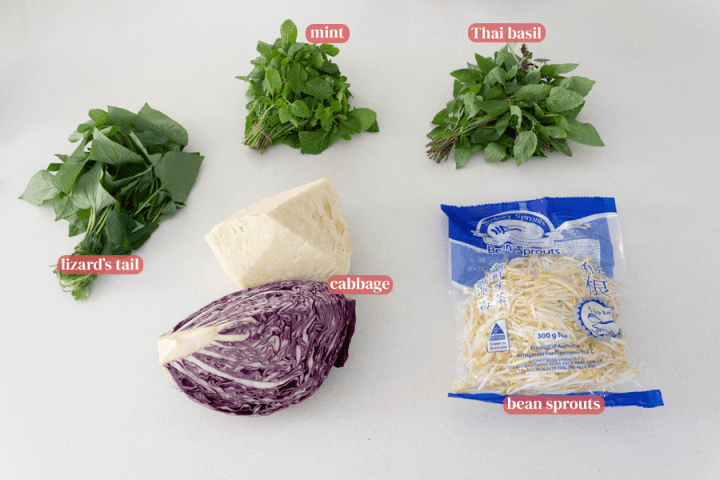Thai basil, mint and lizard's tail in bundles along with quartered whole purple and green cabbage and a bag of bean sprouts