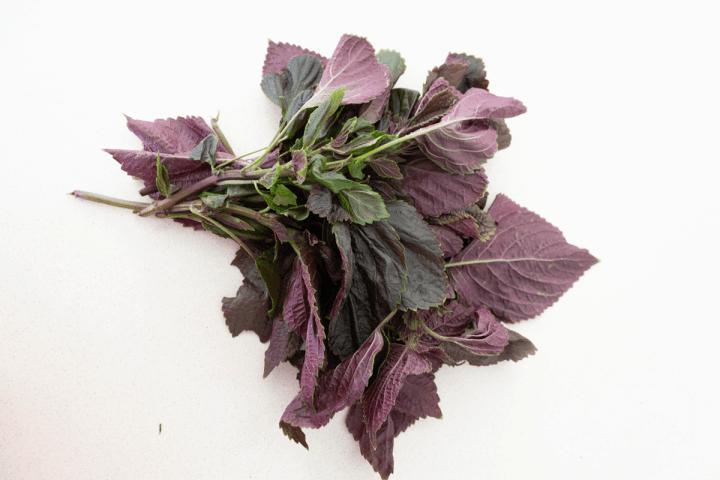 Purple perilla.