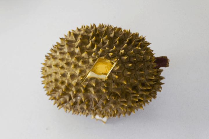 A durian with a hole cut through the husk.