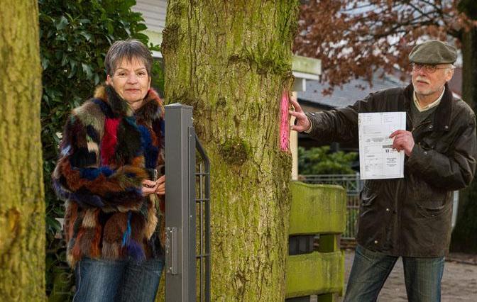 Spray-Aktion am Gremmendorfer Weg: Rätselhaftes um die Bäume 1