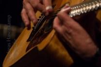 seh-siekmann-gitarren