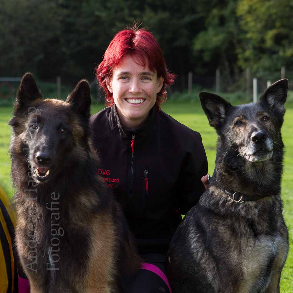 wolbeck-hundesportverein-trio