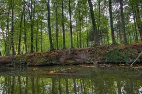 wolbeck-tiergarten-angel