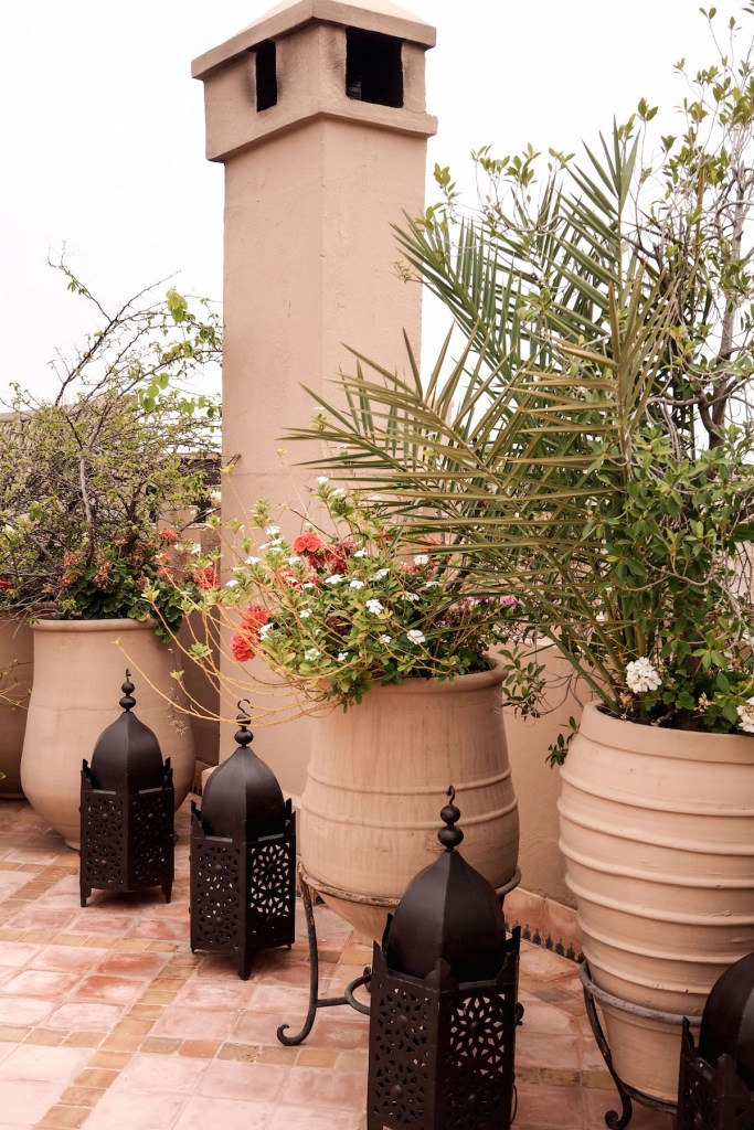 The rooftop of the Riad Kniza, Marrakech