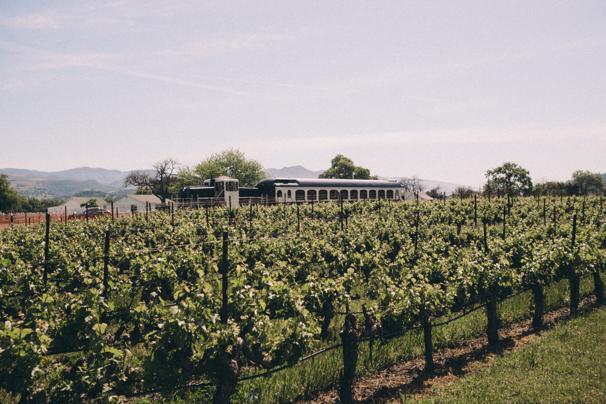 All Aboard the Napa Valley Wine Train | Wolf & Stag