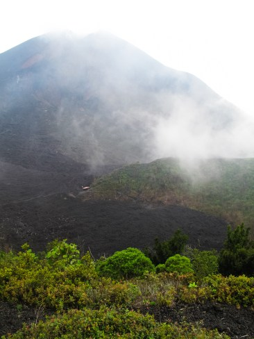 The volcano Pacaya spurted some lava on March 10, just a few months before we payed it a visit.