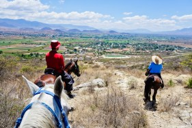With Bobby, Centurion and Spirit gazing at the Nueve Puntas mountain in the distance