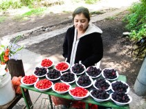 On the way to the entrance of El Boqueron, several locals sell berries grown on the side of the Volcan, including delicious wild raspberries with unusually small grains
