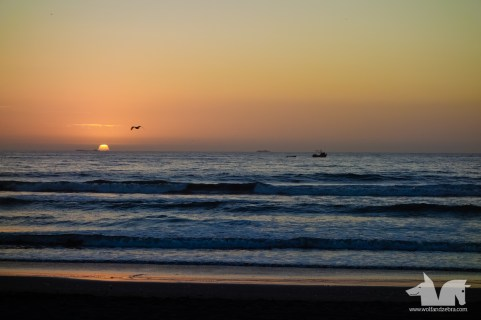 Sunset at La Serena